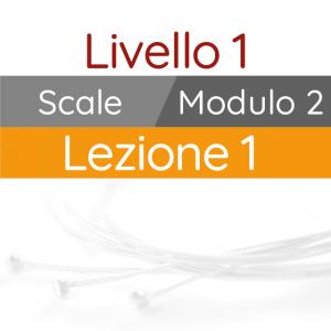 Corso di Chitarra Moderna - Livello 1 - Scale - Scala Maggiore - Box Stretti